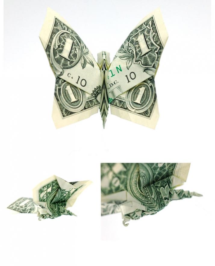 butterfly | Dollar bill origami, Money origami tutorial, Money origami | 886x714