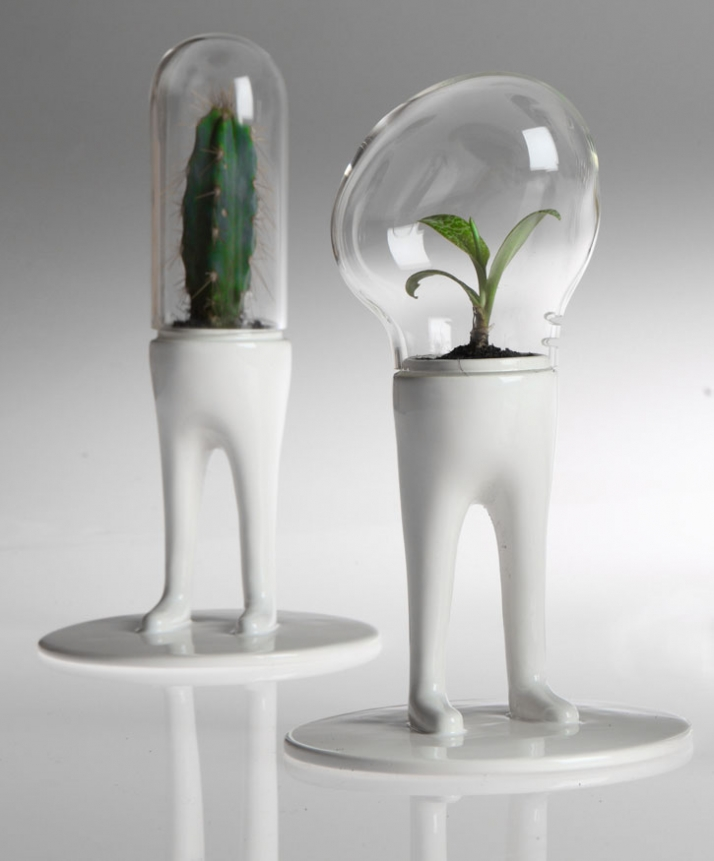 photo © Lorenzo VitturiDOMSAI WHITE / Matteo Cibic, 2009 one of a kind  ceramic, pirex, cactus / 14x14x25cm Retail price / 100€