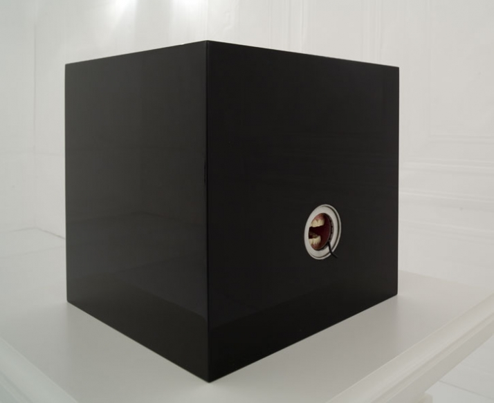 NOT I 2009, Simon Schubert  Wood, enamel, iris diaphragm, plaster, Polyurethane foam 116 x 52,5 x 52,5 cm / 45,67 x 20,67 x 20,67 in photo © VG-Bild K