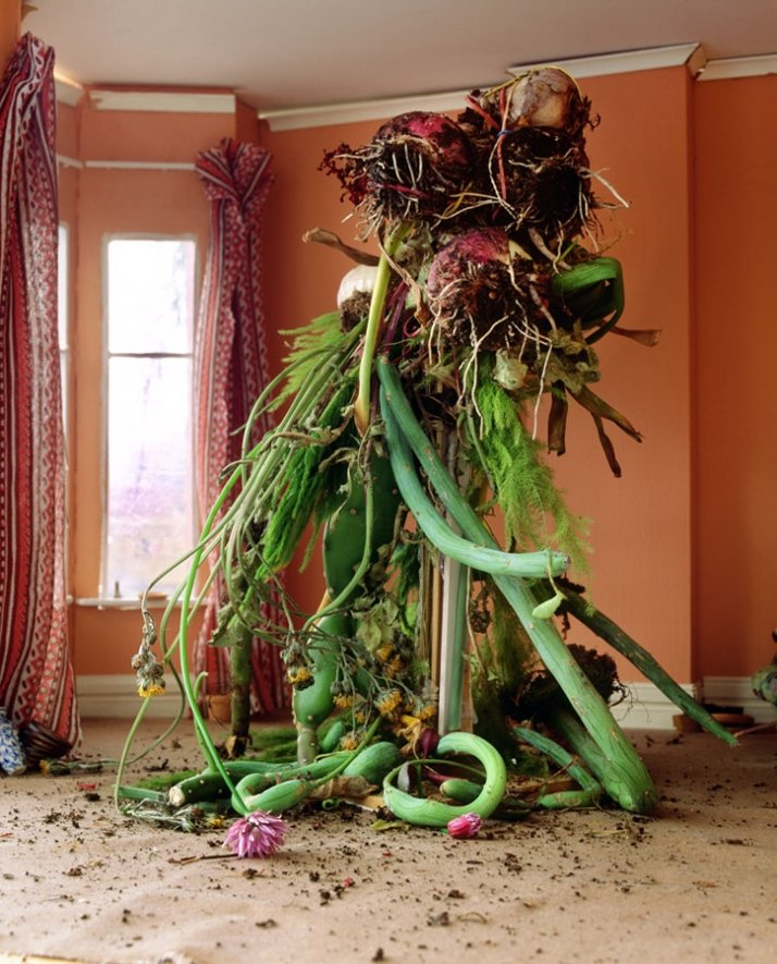 Title: Hydra  Year : 2006 Material : Colour Photograph Dimensions : 151x121cm Courtesy of Xippas Gallery, Paris / Athens