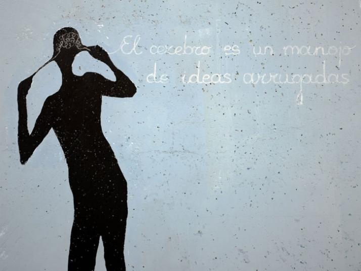 """the brain is a bunch of wrinkled ideas"" // photo © Santos-Díez"