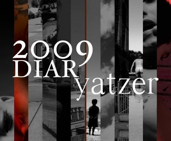 click on the above image to visit the DIARyatzer2009