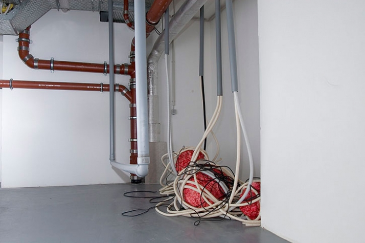 Organfalle, 2008, installation, 350 x 870 x 360 cm,  © Matthias Männer, Courtesy Gallery Dina4 Projekte, Munich