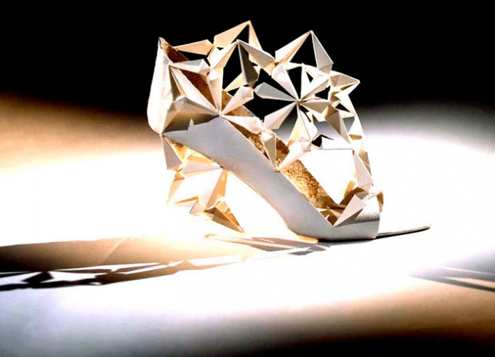 """""""Prism shoe"""" A study of structure photo by Ian Murphy"""