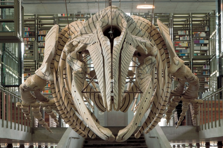 "Gabriel Orozco. (Mexican, born 1962) Mobile Matrix. 2006 Graphite on gray whale skeleton 6' 5 3/16"" x 35' 8 ¾"" x 8' 8 ¾"" (196 x 1089 x 266 cm) Bibliot"