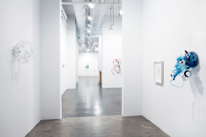 """Sofi Zezmer / Installation View """"Remote Control"""" /2010 Courtesy of Mike Weiss Gallery, New York"""