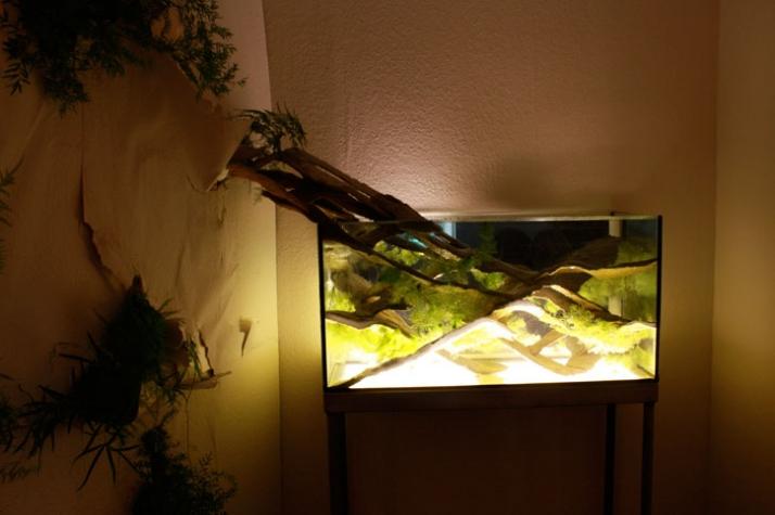 Versus Aquarium designed by Nicolas Perrottet, Florence Darragon Photography: Yatzer.com