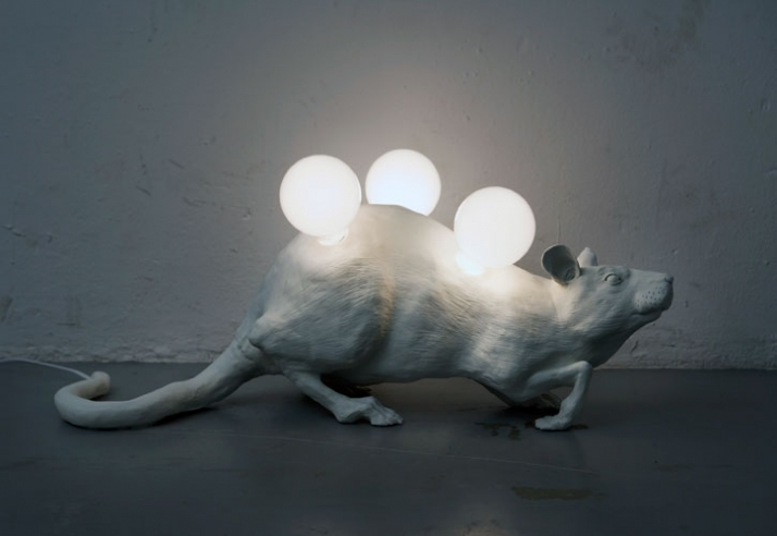 Let The Light In, © Chris Vicini // Image Courtesy of Chris Vicini