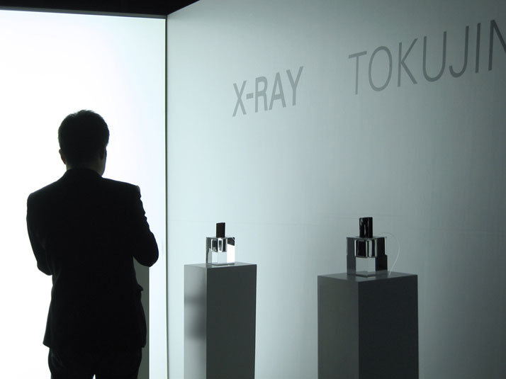 The installation during Tokyo Design Week 2010 at Tokyo Midtown, Roppongi. Image Courtesy of Tokujin Yoshioka