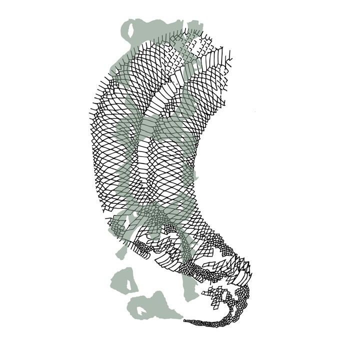 ''Snake&molting legwear'' illustration , Image Courtesy of Camille Cortet