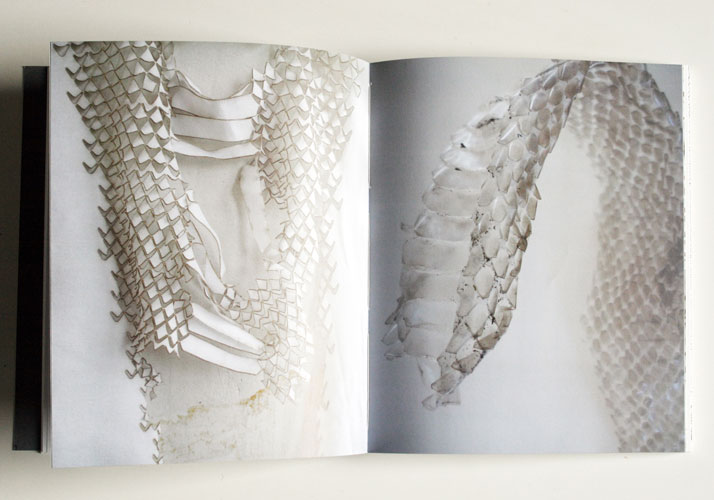 ''Snake&molting legwear'' research material and inspiration , Image Courtesy of Camille Cortet