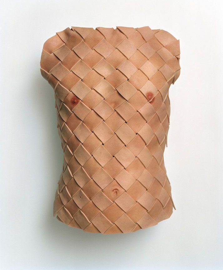 Anders KrisárCuirass, 2005. Silicone paint on silicone, mounted on fiberglass, with board, plastic padding, brass screws, screw eyes, steel wire, and