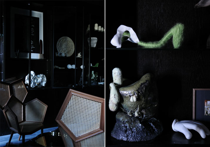 Suite 142 - Cabinet de curiosités, photo © Ivan Terestchenko Image Courtesy of L'Officiel, Paris (September 2011)