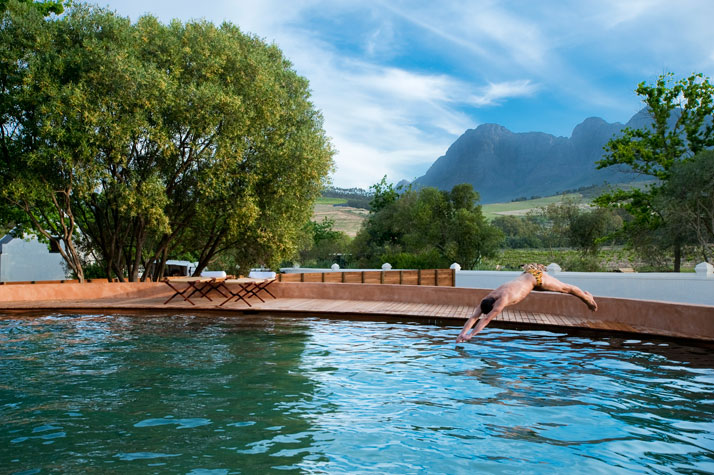 Saltwater pool, photo © Babylonstoren