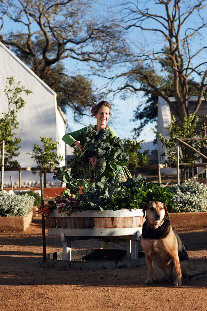 Gardener Gundula is harvesting for the restaurant, photo © Babylonstoren