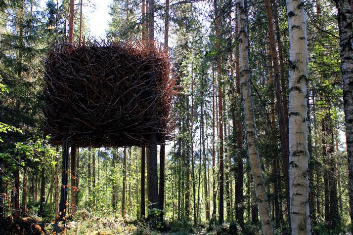 The Birds nest - boomhotel - foto © Peter Lundstrom, WDO