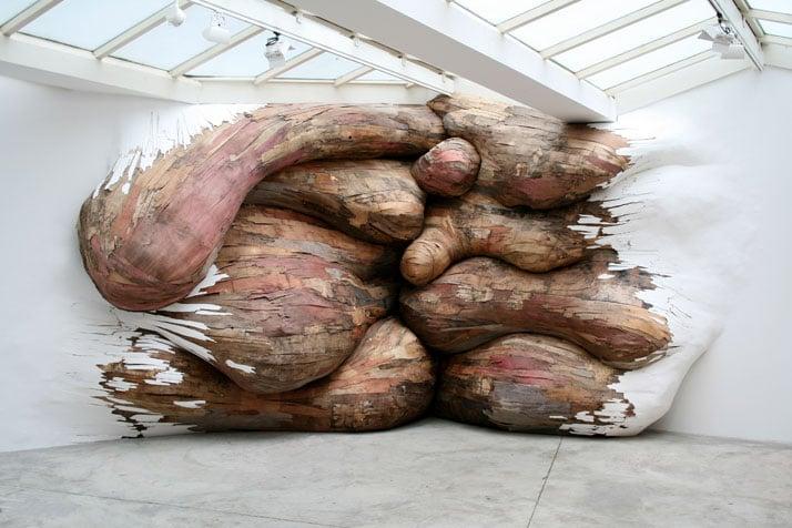 Tapumes| Henrique Oliveira, 2008Galerie Vallois, Paris plywood and PVC 3,2 x 6,2 x 0,9 m photo © Henrique Oliveira