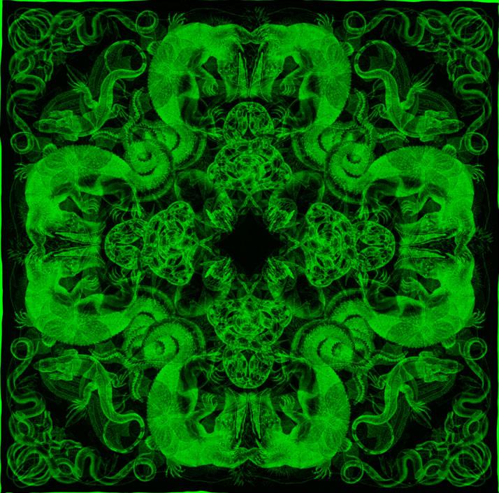 GREEN composition of scarf Jungla // Courtesy of Carnovsky