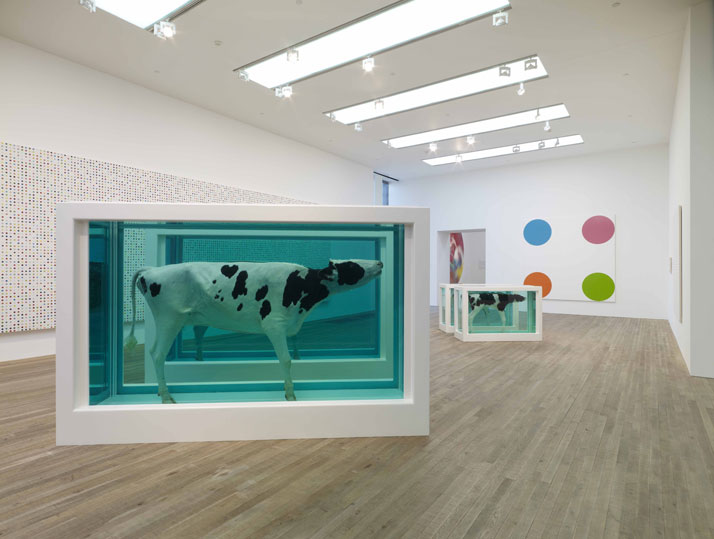 damien hirst at the tate middle boop