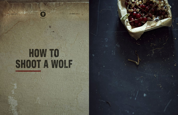 The Voracity, Issue No5: How To Shoot A Wolfphoto © Anna Williams Photography
