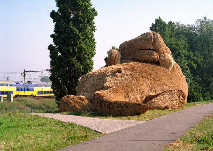 Musk Rat, Nieuwerkerk aan den Ijssel 2004, photo© Rick Messemaker