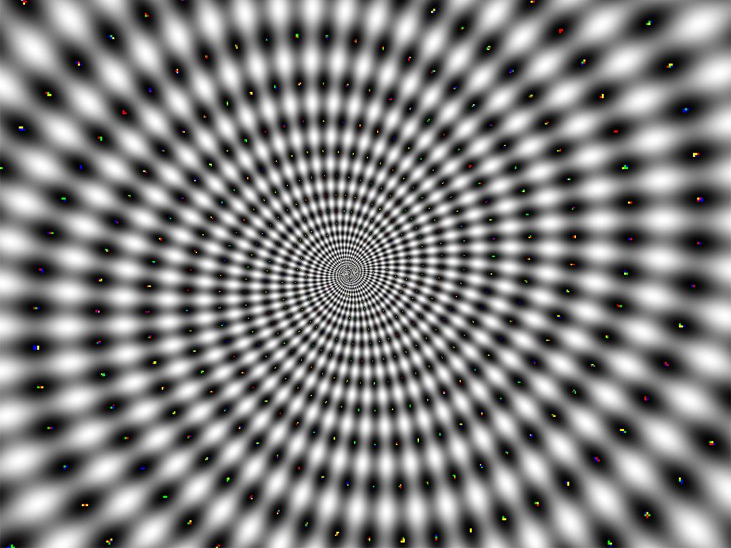 Illusion Net Worth