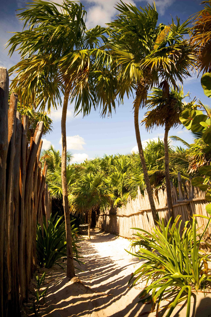 Coqui Coqui Tulum, photo © Coqui Coqui Residences & Spas.