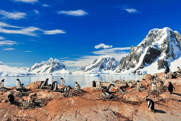 Goudier island, Antarctica.photo ©David De Vleeschauwer,Classe Touriste.