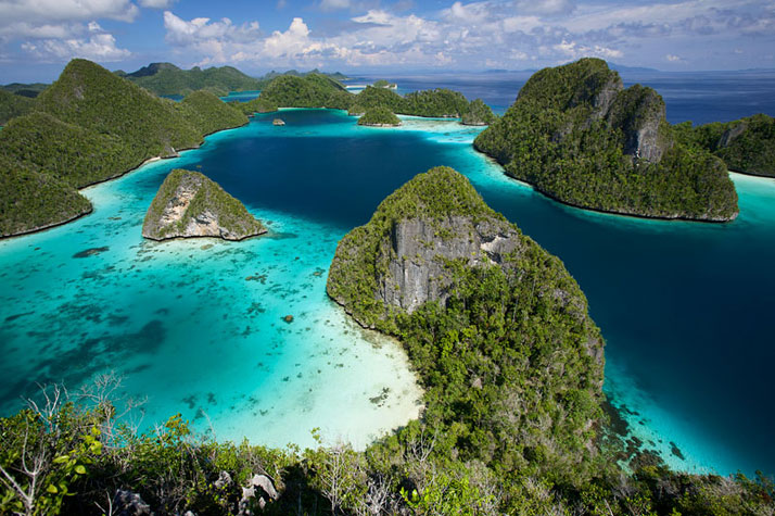 Raja Ampat Islands, West Papua, Indonesia.photo © Tim Laman.