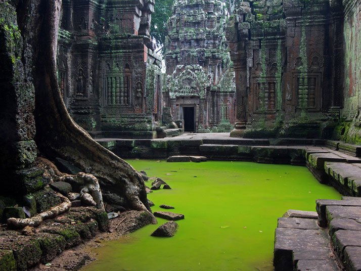 Ta Prohm Temple, Angkor Wat, Cambodia.photo © Peter Nijenhuis.