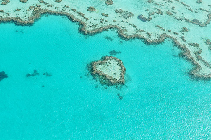 Heart Reef, Great barrier Reef, Australia.photo © Martin Wasilewski.