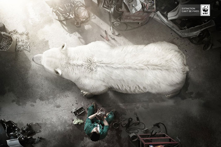EXTINCTION CAN'T BE FIXED ad campaign by BBDO, Spain for WWF. Release date: August 2013.