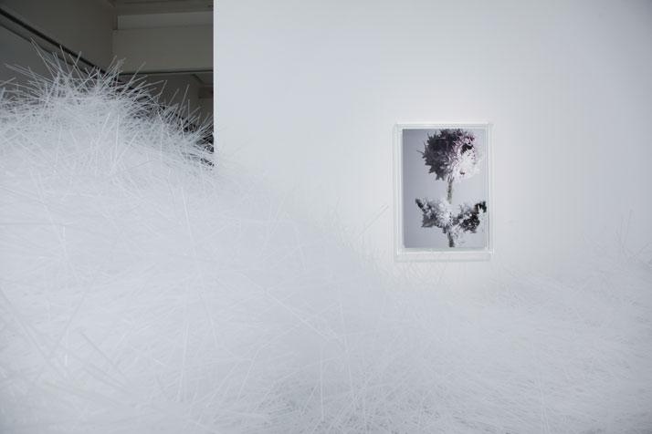 Tokujin Yoshioka, Tornado 2007 & The Rose 2013.photo © MOT / Museum of Contemporary Art Tokyo.