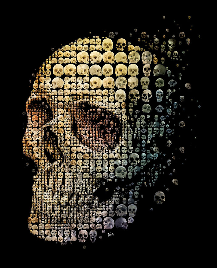 Skull evolution by Charis Tsevis.Mosaic illustration of a human skull for May 2011 cover of Discover magazine.Courtesy of Charis Tsevis and Discover Magazine.