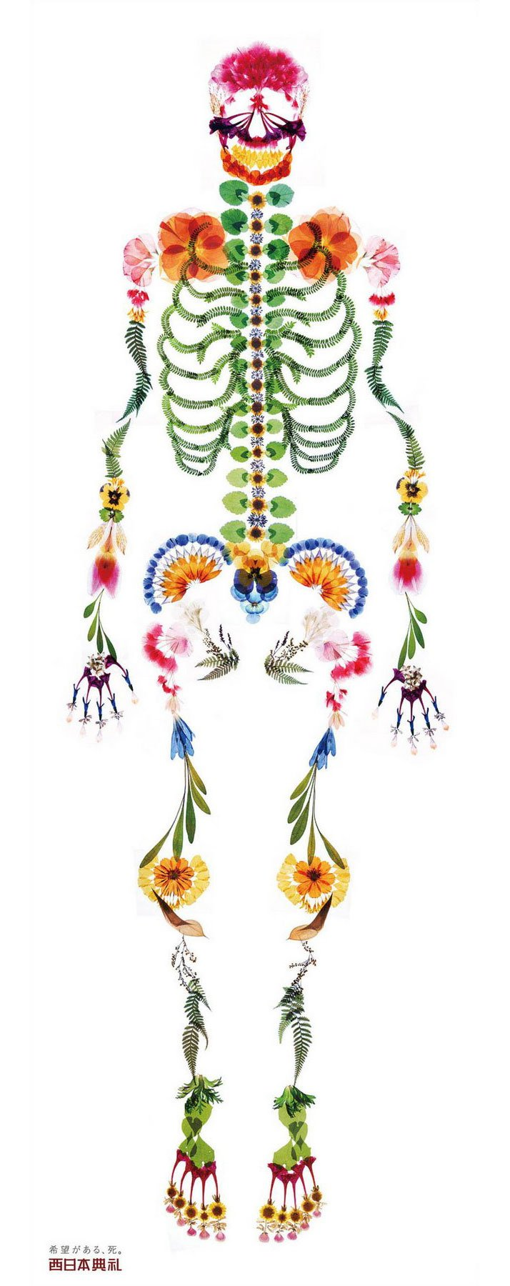 A real-size human skeleton made from pressed flowers by creative director Mari Nishimura