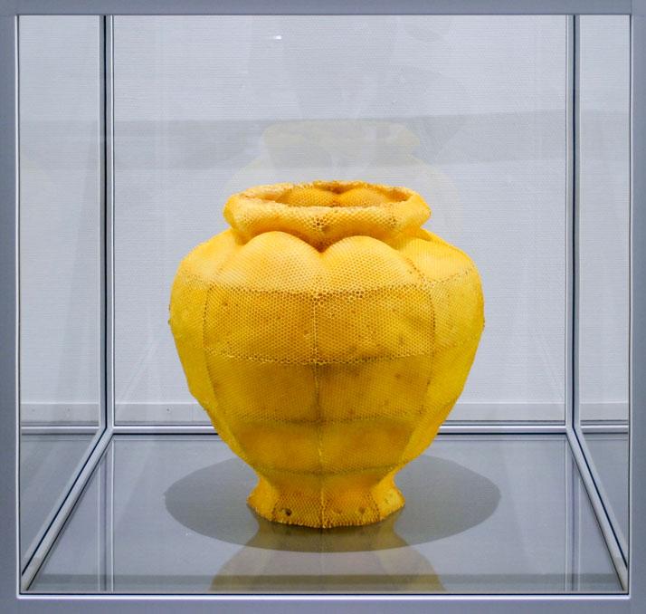 Tomáš Libertíny,Vessel #2, 2011.beeswax, glass, alumnium.86 x 86 x 86 cm (cabinet).50 x 35 x 35 cm (vessel).Collection: Museum Boijmans van Beuningen.photo © Studio Libertíny.