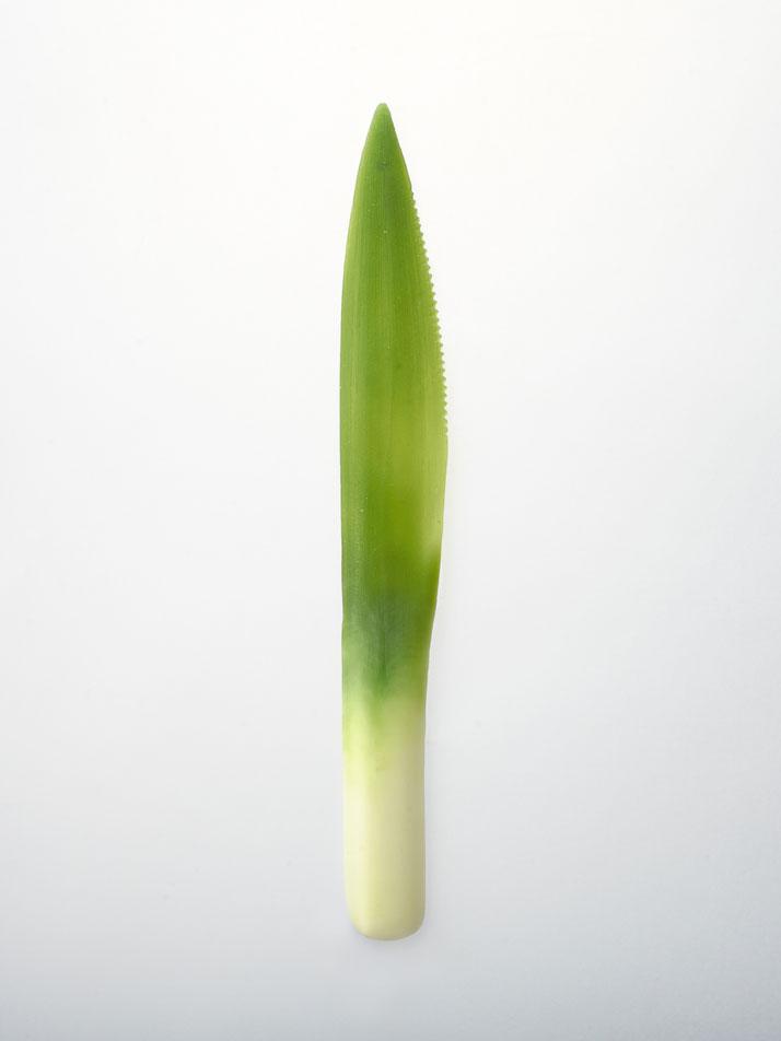 posate vegetali 8