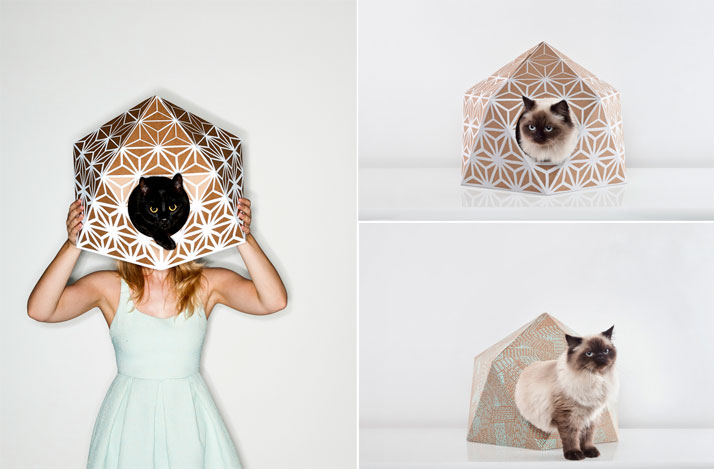 CAT CUBE by Delphine Courier.