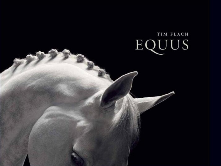 The cover of EQUUS book by Tim Flach (2008).