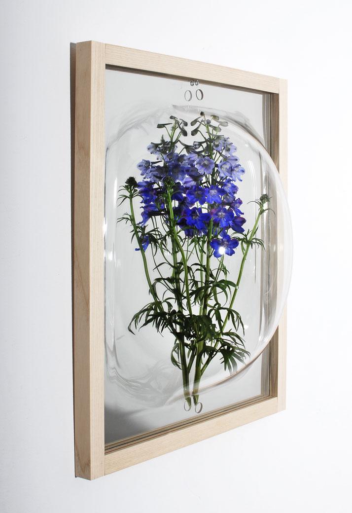 Curator Cabinet, photo © StudioThier&VanDaalen.