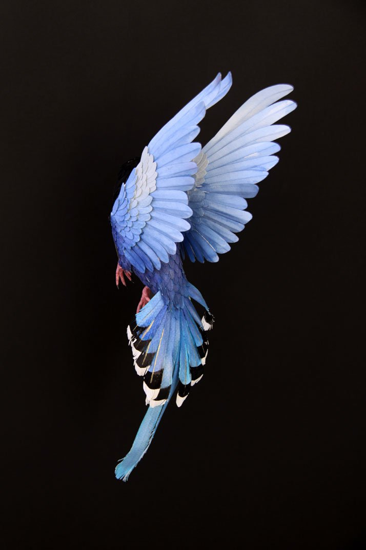 Bird Sculptures realistic bird paper sculpturesdiana beltran herrera | art-sheep