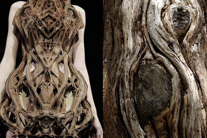 Match #110Iris Van Herpen Spring 2012 | Old tree bark