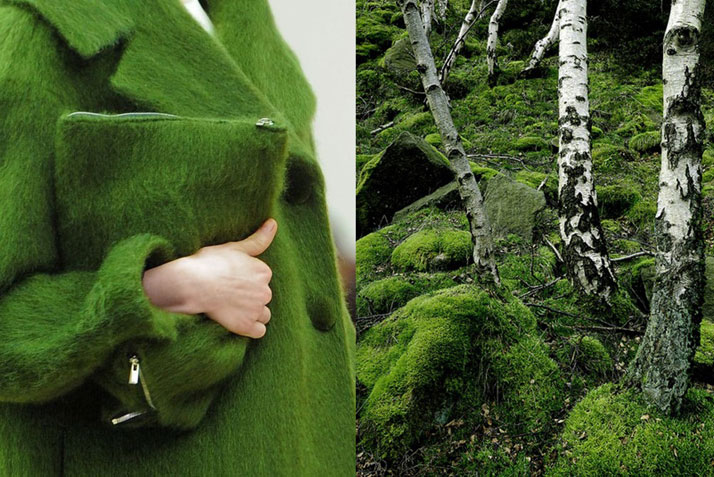Match #176Details at Céline Fall 2013 | Forest with green moss and white trees