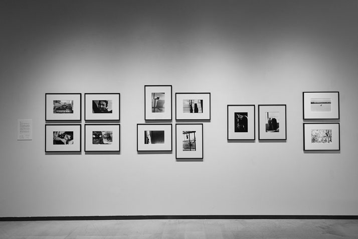 The 'Cats' section of the exhibition 'Masahisa Fukase - The Incurable Egoist'. Photo by Wataru Kitao.