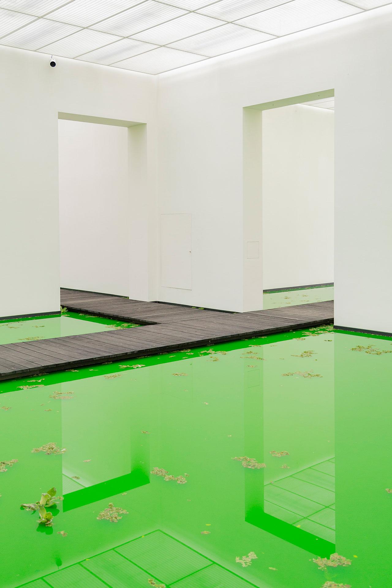 Olafur Eliasson,LIFE, 2021.Installation view: Fondation Beyeler, Riehen/Basel, 2021.Courtesy of the artist; neugerriemschneider, Berlin; Tanya Bonakdar Gallery, New York / Los Angeles © 2021 Olafur Eliasson. Photo:Pati Grabowicz