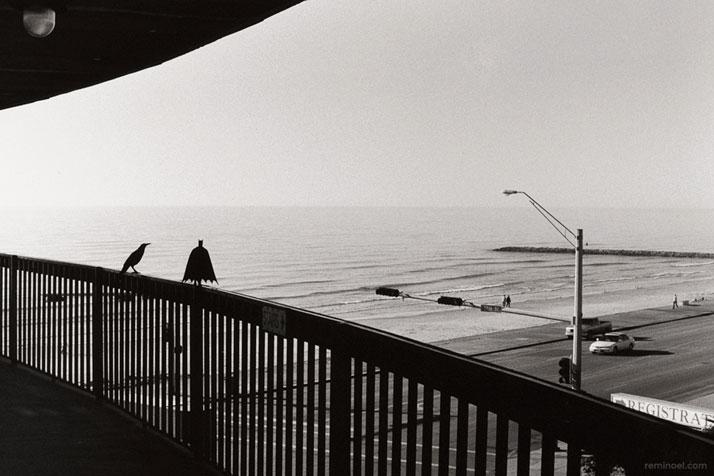 Rémi Noël,Beyond the sea, Galveston.Courtesy of the artist.