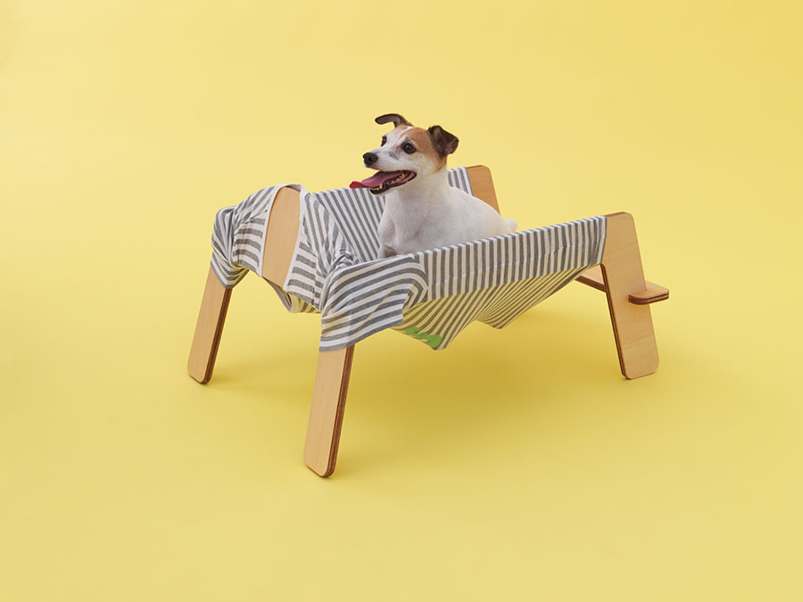 TORAFU ARCHITECTS    X    Jack Russell Terrier.Photo by Hiroshi Yoda.