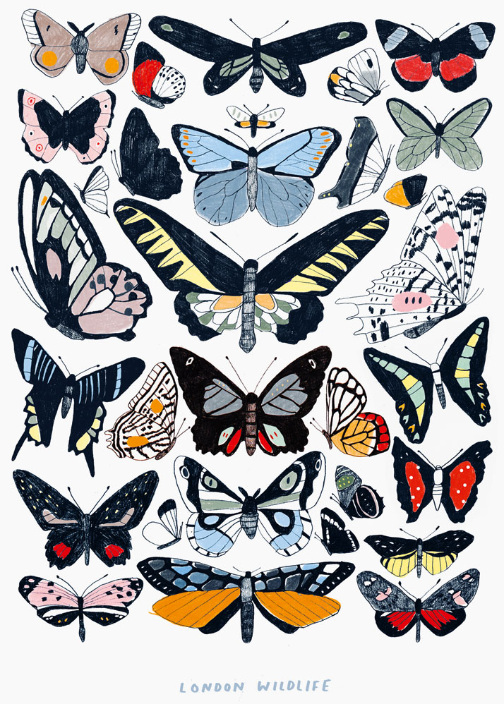 Hanna Melin, London Wildlife, 2014. From Visual Families, Copyright Gestalten 2014.