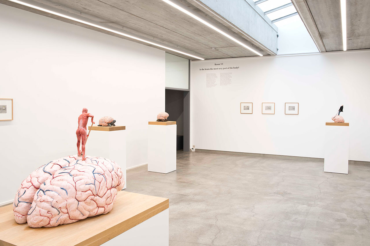 Jan Fabre, 30 Years-7 Rooms.Exhibition view, Room VI – Is the brain the most sexy part of the body? © Deweer Gallery, Otegem Belgium, 2015.