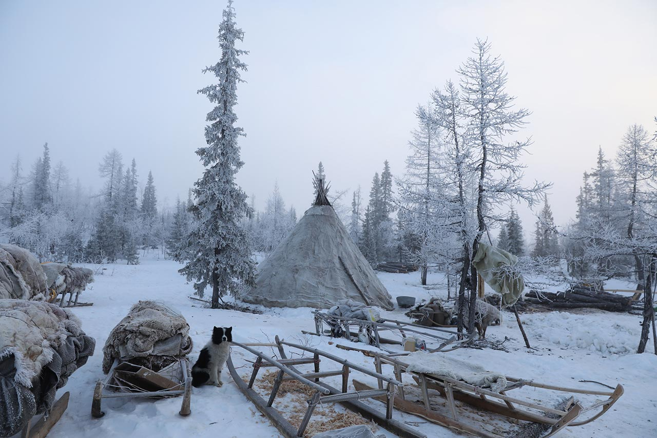 "The ""Chum"" – home of the Nenets. Yamalo-Nenets Autonomous Okrug, Russia. Photo © Oded Wagenstein."